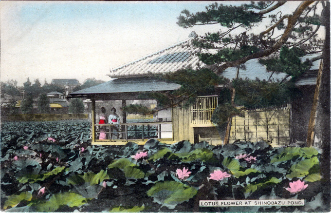 Shinobazu Pond, Ueno, c. 1910.