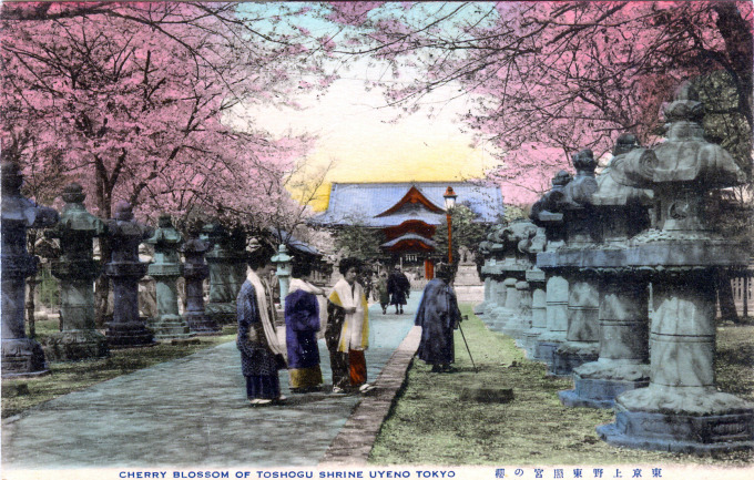 Tosho-gu Shrine, Ueno Park, under the cherry blossoms, c. 1910.