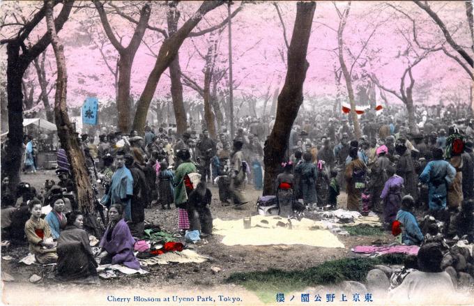 Cherry Blossoms at Uyeno Park, Tokyo, c. 1910.
