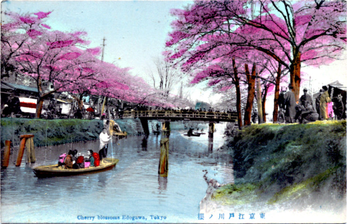 Cherry Blossoms Yedogawa, c. 1910.