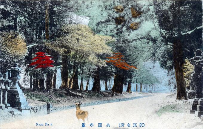 Nara Park, Nara, c. 1910.
