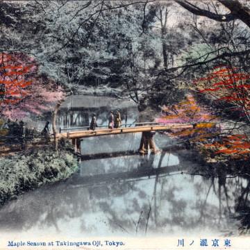 Maple season at Tokinogawa Oji, Tokyo, c. 1910.